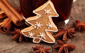 Picture winter, tree, food, cookies, cinnamon, dessert, cakes, herringbone, glaze, spices, star anise, Anis