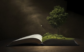 Picture background, tree, book