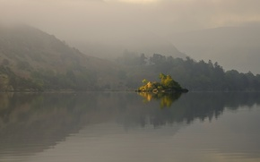 Picture trees, fog, lake, surface, reflection, hills, island
