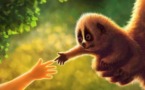 Picture greens, foliage, hand, baby, art, animal, cub, Lori, Jiang Zhi