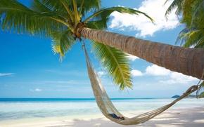 Picture sand, sea, beach, summer, the sun, Palma, heat, vacation, glasses, hammock, book