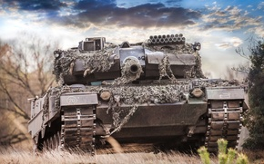 Picture forest, the sky, the barrel, tank, combat, Leopard 2A6M