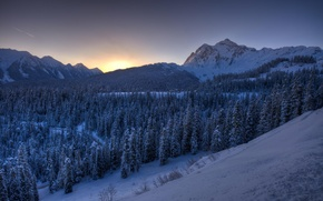 Picture winter, forest, snow, mountains, dawn