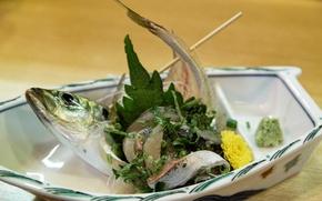 Picture fish, dish, herring