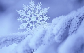 Wallpaper snow, snowflake, white, blue