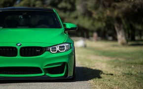 Picture auto, style, photo, green, Wallpaper, bmw, blur, green, front, f80