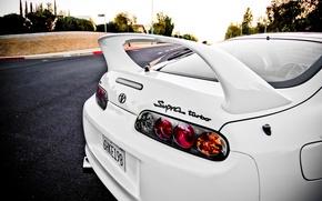 Picture white, street, lights, turbo, white, supra, Toyota, street, Toyota, supra, back, turbo