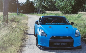 Picture road, grass, trees, posts, nissan, road, Nissan, blue, gtr, the front, gtr, r35