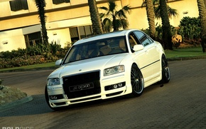 Picture audi, white, design