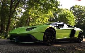Picture green, lamborghini, anniversary, aventador, lp700-4, 50th