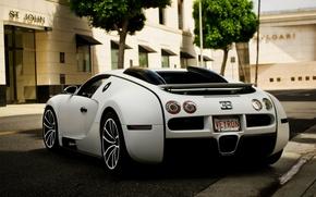 Picture Auto, The city, Trees, Street, Bugatti, Machine, Veyron