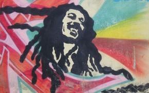 Picture face, smile, figure, bob marley, dreadlocks