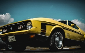 Picture mustang, ford, old, classic, mach1