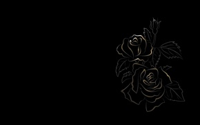 Picture flowers, figure, black background