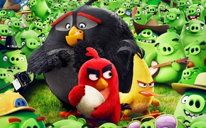 Picture cinema, animation, guitar, Red, game, bird, camera, feathers, cartoon, movie, series, film, friends, egg, angry, …