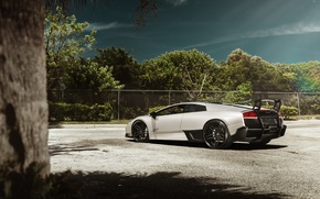 Picture Lamborghini, supercar, Murcielago, SuperVeloce, LP 670-4