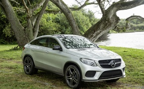 Picture forest, grass, trees, nature, lake, car, Jurassic world, Jurassic World, Mercedes-Benz GLE Coupe
