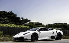 Picture front view, Lamborghini, Murcielago, road, lamborghini, white, the fence, lp670-4 SV, white, trees, murcielago, the ...