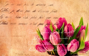 Picture text, retro, tulips, grunge