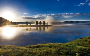 Picture forest, the sky, clouds, trees, fog, river, dawn, USA, Yellowstone National Park