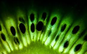 Picture macro, green, texture, kiwi, fruit