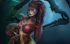 Picture zerg, art, StarCraft, sarah kerrigan, queen of blades