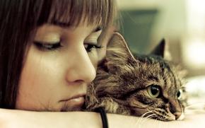 Picture girl, photo, eyes, mood, Cat, animal, look, feeling, portrait