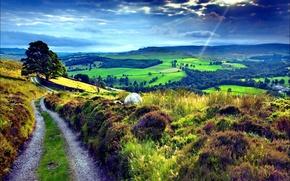 Picture road, nature, hills, landscape, field