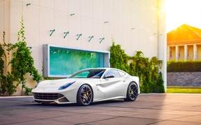 Picture Ferrari, Car, Power, Front, Sun, White, Sport, Supercar, Berlinetta, F12, Wheels, Ligth