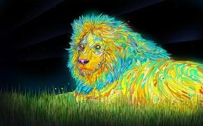 Wallpaper color, mane, Leo, the sky, grass, stars