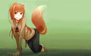 Picture fox, anime, people