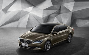 Picture Skoda, skoda, superb, superb