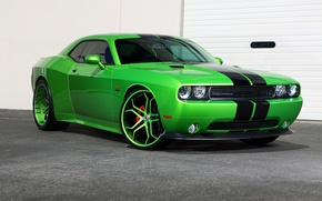 Picture Dodge, Dodge Challenger, ASANTI