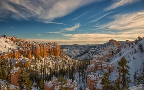 Picture winter, the sky, snow, trees, mountains, rocks, canyon