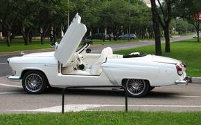 Picture Car, White, Cabriolet, Custom, Volga GAZ 21