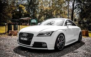 Picture Audi, Audi, Machine, Cars, Sports cars, SportCars