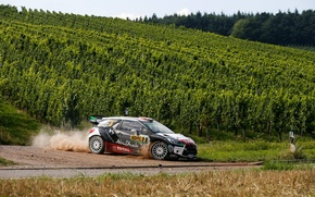 Picture Dust, Turn, Citroen, DS3, WRC, Rally, Rally, Kris Meeke