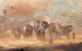 Picture sand, trees, desert, elephant, vulture, Africa