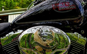 Picture hdr, chrome, Harley Davidson, cylinders, harley, tank, live to ride