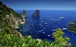 Picture sea, rocks, yachts, Bay, Capri