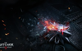 Picture the Witcher, mosaic, CD Projekt RED, The Witcher 3: Wild Hunt