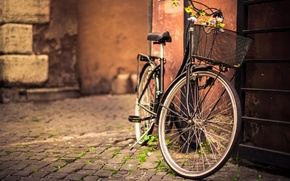 Picture bicycle, flower, photography, bike, street