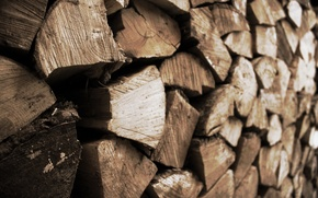 Picture macro, background, wood