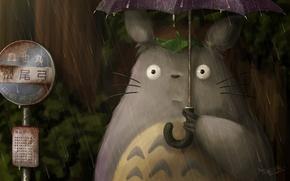Wallpaper My neighbor Totoro, fraffrog, Totoro, Hayao Miyazaki, rain, art