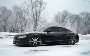 Picture Winter, Audi, Snow, Tuning, Drives, Audi S5, Vossen