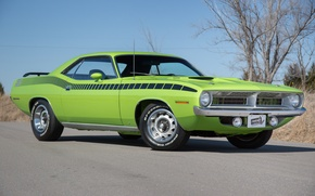 Picture Green, 1970, Plymouth, Cuda