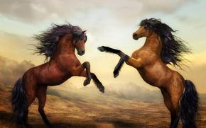 Picture figure, horses, horse, pair
