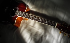 Picture Guitar, Frets, Strings