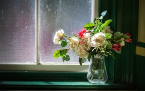 Picture roses, bouquet, window, vase