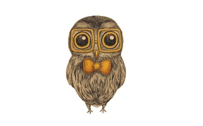 Picture owl, bird, glasses, white background, painting, bow, bow, owl